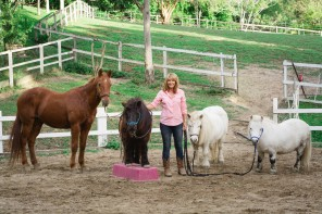 Sue Spence's Horses Healing Humans goes international
